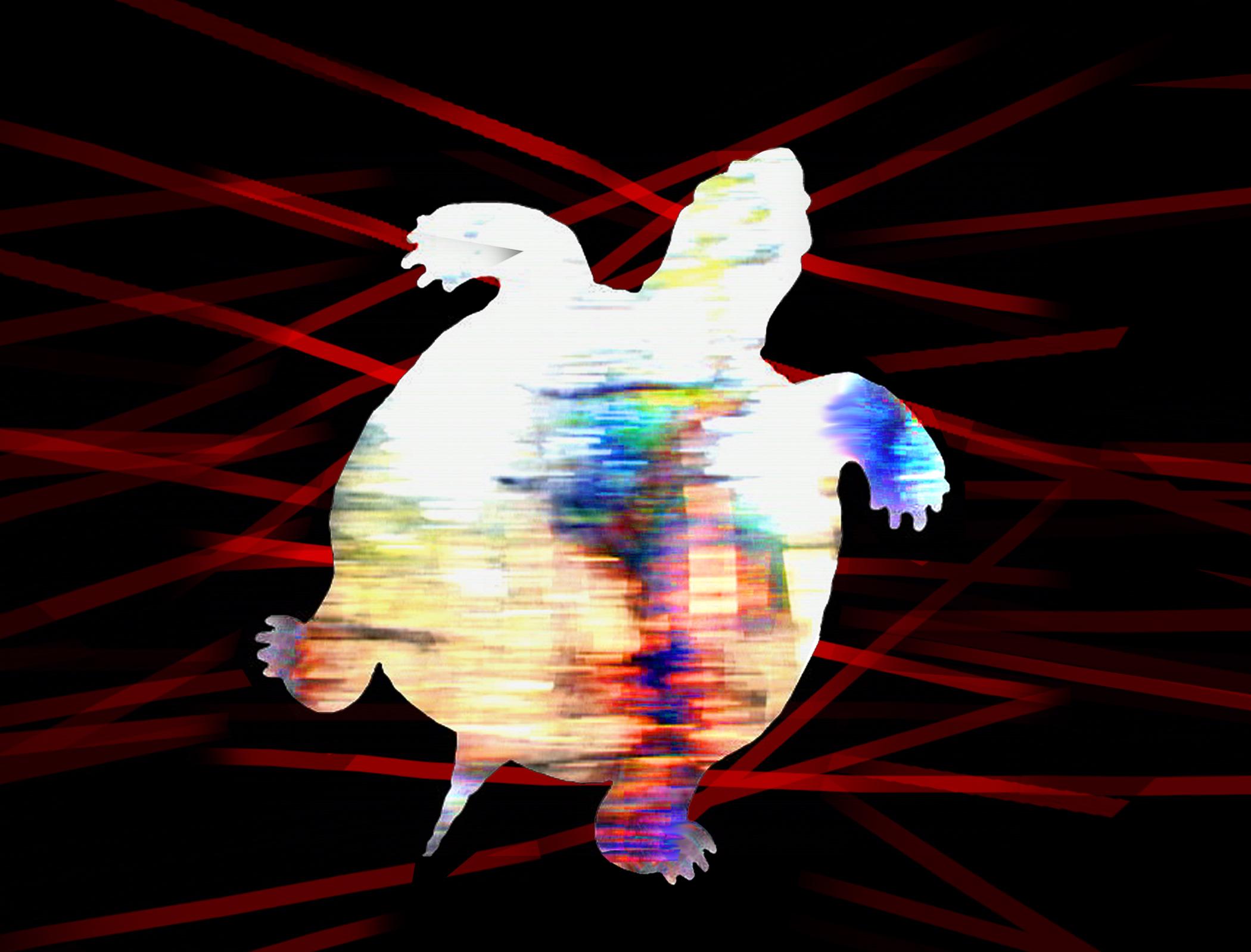 zzz-turtle-01-copy-2